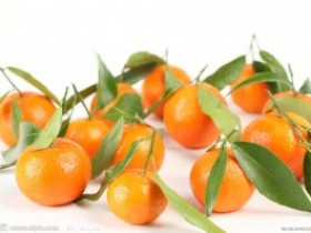 多吃橘子能防肝病