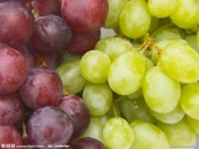 冬季吃这些水果小心慢性中毒