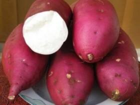 冬季红薯可不能随便吃