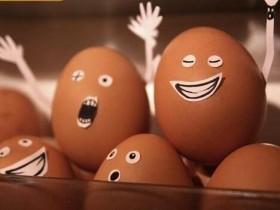 鸡蛋为什麽要放冰箱?真相是…