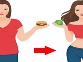 不运动减肥法彻底改变体质,四大饮食法则让你越吃越瘦
