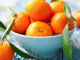 柑橘全身是药!橘皮2茶饮止胃寒、治感冒