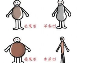 酵素不足易发胖!从体型看看你缺乏哪一种酵素