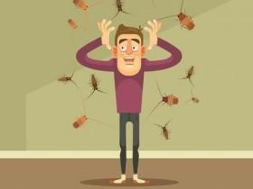 蟑螂也是过敏原!自制天然饵剂有效除蟑防过敏