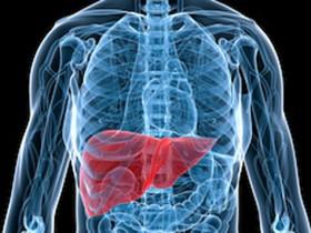 脂肪肝3步变肝癌  暴食酗酒易伤肝