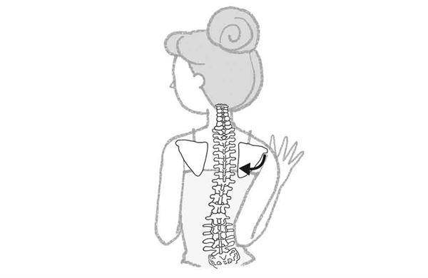 脊椎老化有7征兆!做转身推牆防老解痛