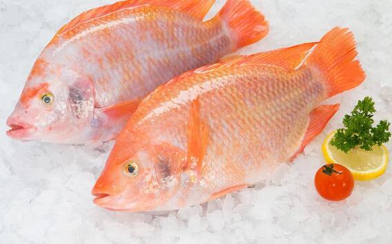 保护大脑、远离帕金森氏症 吃这3种鱼