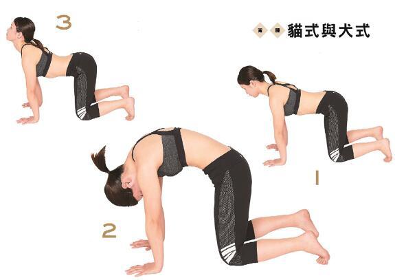 增肌减脂训练大肌肉! 打造小蛮腰