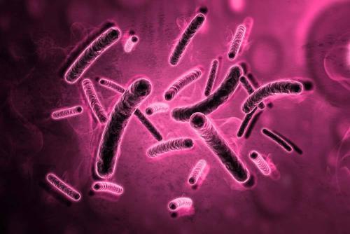 支原体感染怎么引起的?有哪些症状?怎么治疗?